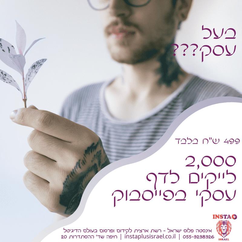 אינסטה פלוס ישראל קידום עסקים באינסטגרם