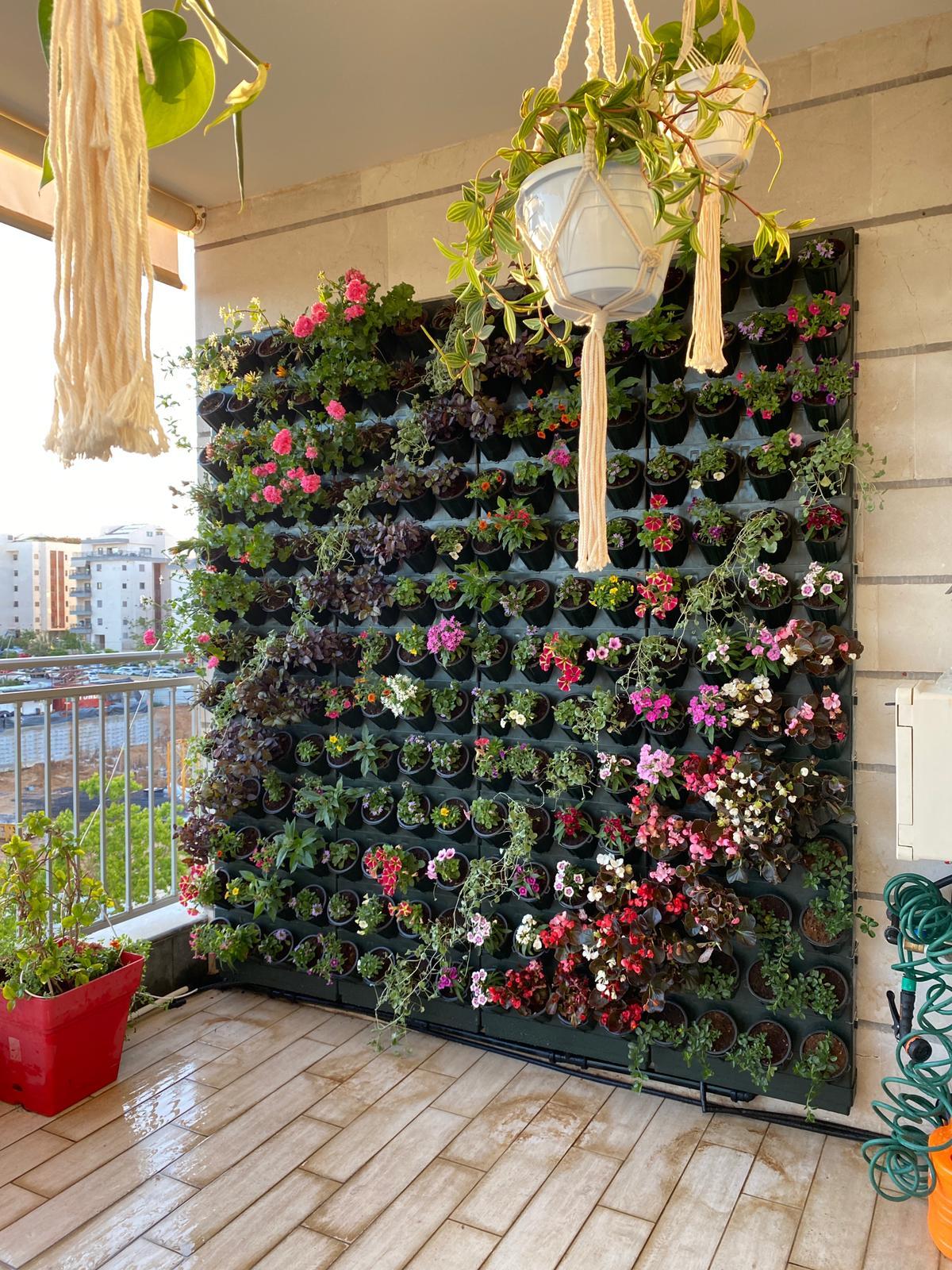 גינות וגני נוי wall garden