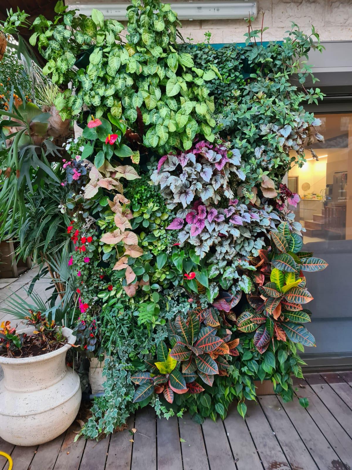 גני נוי wall garden